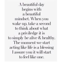 A beautiful day