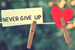 never give up, heart, pegs